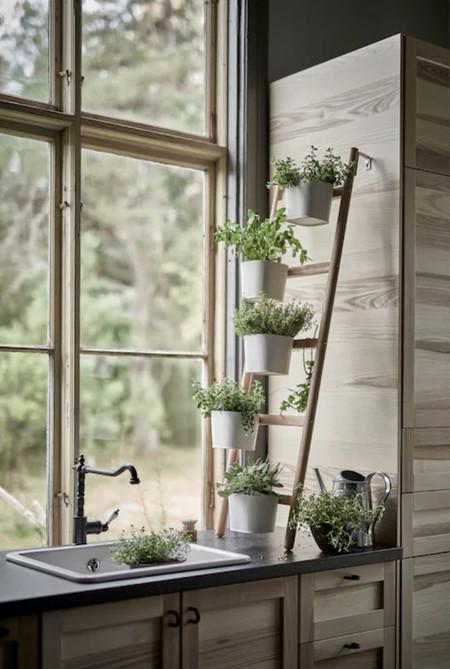 Ikea Estante Plantas