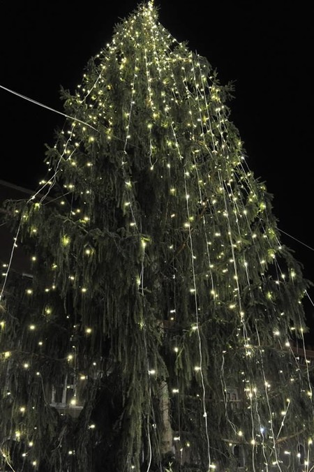 Arbol De Navidad De Roma Feo
