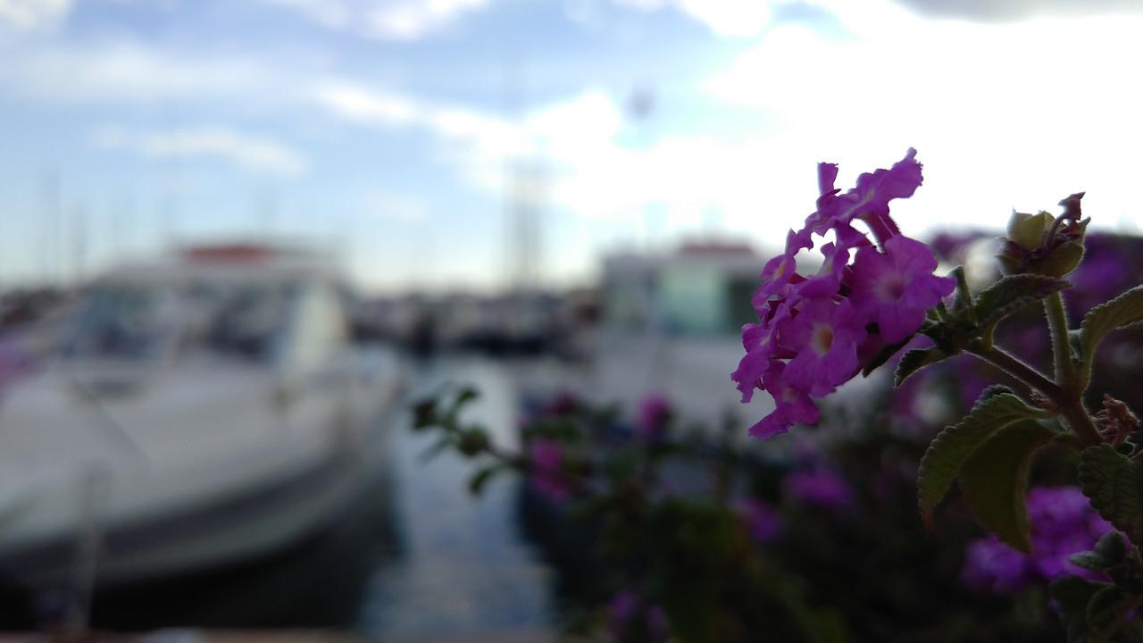 Foto de ZTE Axon 7, cámara (11/35)