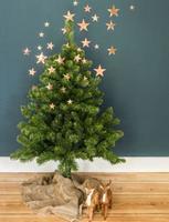 Hacia las estrellas... ¡ya llega la Navidad!