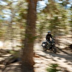 Foto 14 de 15 de la galería harley-davidson-pan-america-2020 en Motorpasion Moto