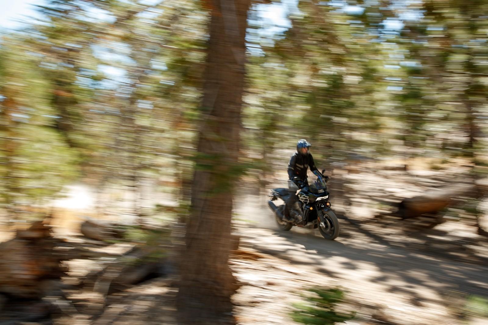 Foto de Harley-Davidson Pan America 2020 (14/15)