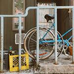 Qué ver en Williamsburg, el barrio hipster de Nueva York
