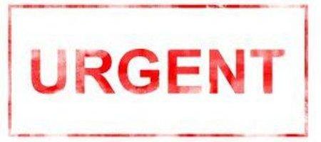Análisis de las medidas urgentes para la promoción del empleo: urgentes sí, pero no de promoción del empleo