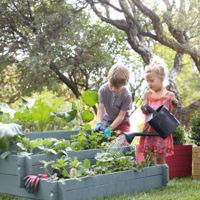 ¿Se debería enseñar agricultura en el cole? Una nueva asignatura para volver a las raíces