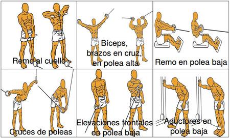 ejercicios de trapecio en el gym