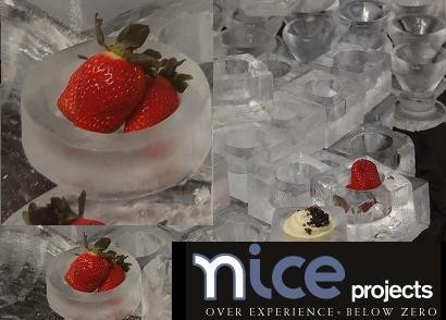 Utensilios de hielo con Nice-projects