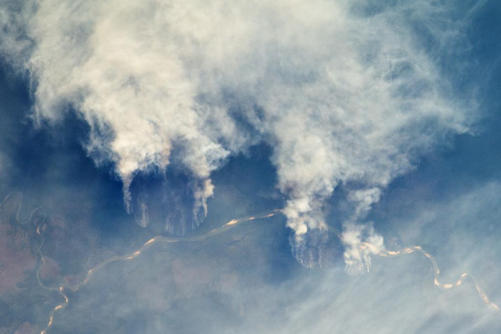 El Amazonas ardiendo: así se convierte uno de los pulmones de la Tierra en una fuente importante de calentamiento global