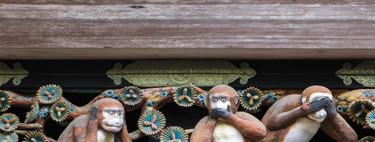 Los orígenes evolutivos de la moral: ¿monos o dioses?