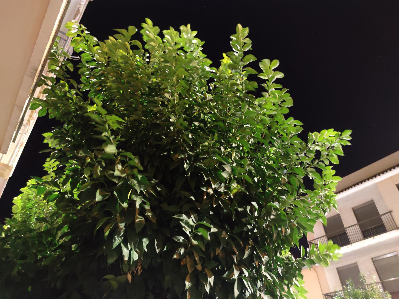 Foto de Xiaomi Mi Note 10 (16/44)
