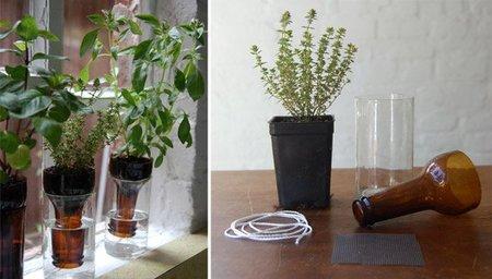 Recicladecoración: convierte tus botellas en macetas auto regantes