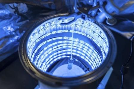 Fotosíntesis artificial para obtener energía y aire limpio