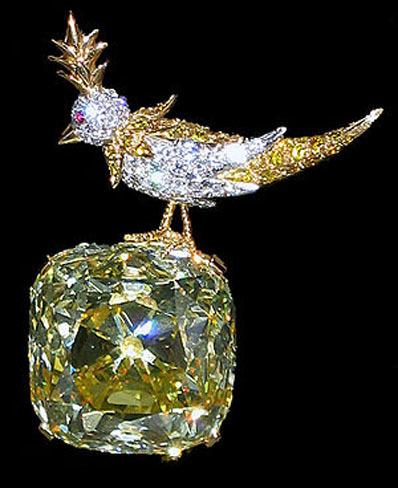 Bird on a rock by Jean Schluberger