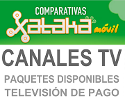 Canales Television
