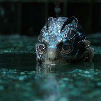 Nueva polémica con 'The Shape of Water': Guillermo del Toro es demandado por presunto plagio de una obra de 1969 que ni conoce
