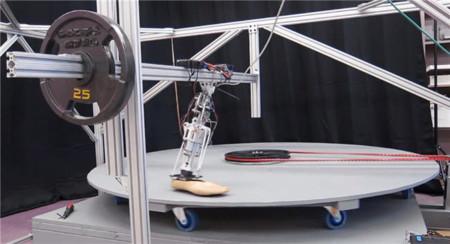 Llegan las piernas robóticas todoterreno