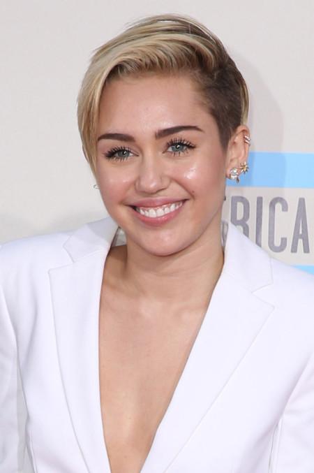 American Music Awards 2013, las mejor vestidas sobre la alfombra roja