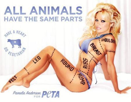 España es muy bonita sí... pero ¿Corridas de toro? ¡Pamela Anderson está indignada!