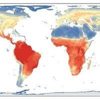 Se completa la primera revisión global y mapa de cada vertebrado sobre la Tierra