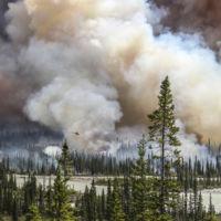 Environmental POTY 2016 destaca las fotografías más impactantes sobre el medio ambiente