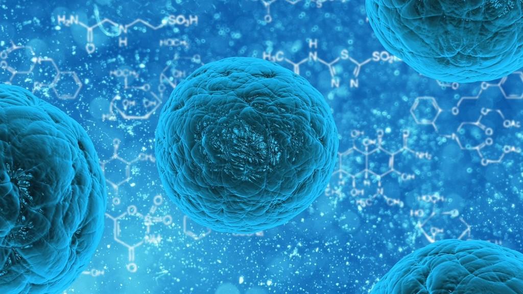 La amenaza de las super-bacterias resistentes a los antibióticos se dispara con la quiebra de las nuevas farmacéuticas