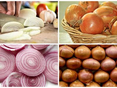 ¿Amarilla, blanca, roja o Vidalia? Para qué sirve cada tipo de cebolla y cuándo debemos comprarlas