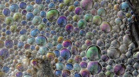 """Un curioso """"baile"""" de las cianobacterias sugiere que la Gran Oxidación tuvo relación con la distinta duración de los días hace millones de años"""