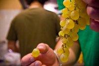 ¿Dónde y por qué tomamos uvas en Nochevieja?
