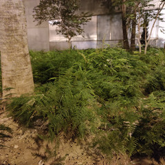 Foto 33 de 44 de la galería xiaomi-mi-note-10 en Xataka
