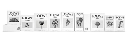 Campana Masculina Rebranding De Loewe
