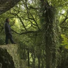 Foto 4 de 4 de la galería el-hobbit-nuevas-imagenes-en-el-set-de-rodaje en Espinof