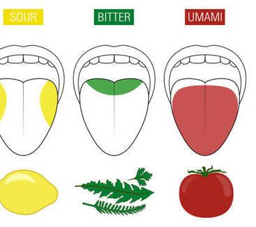 ¿Qué es el sabor Umami y cómo consigue convertir la comida en adictiva?