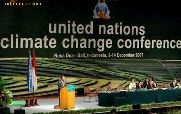 La cumbre de Bali contra la deforestación