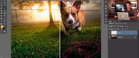 Cómo hacer que los colores cobren vida en Photoshop, un tutorial interesante