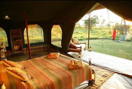 Elephant-Pepper-Camp-3