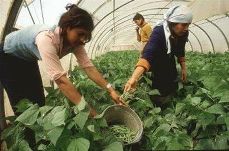 ¿Las mujeres del medio rural son inútiles?