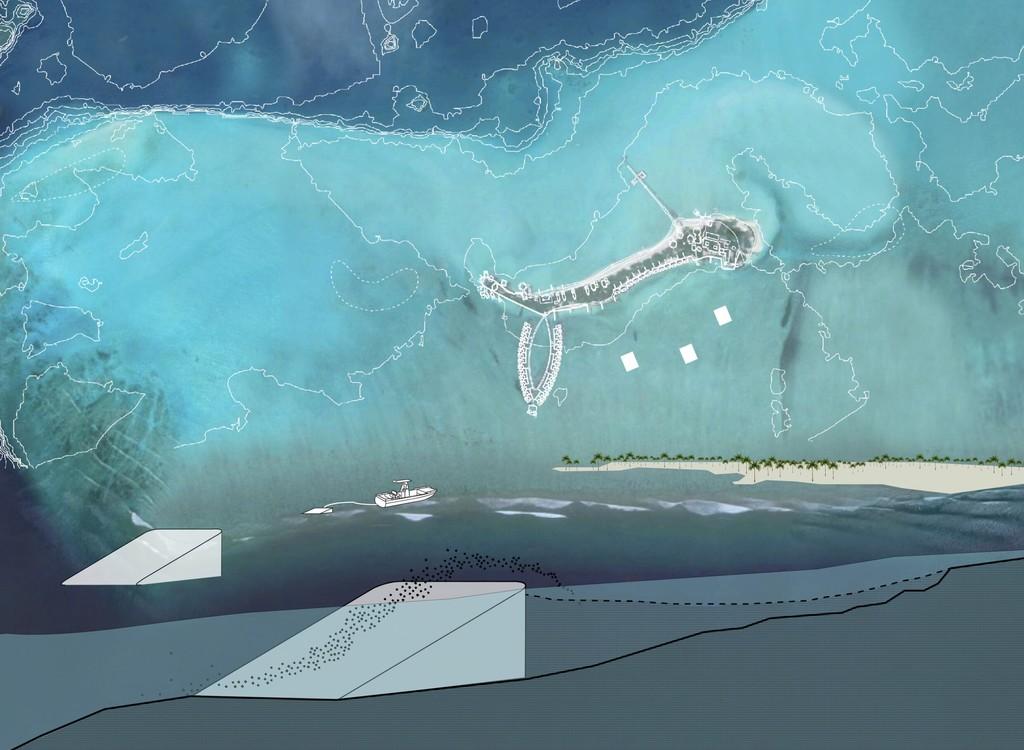 La idea del MIT para evitar que islas y regiones costeras se inunden por la subida del nivel del mar es que nos ayude la propia naturaleza