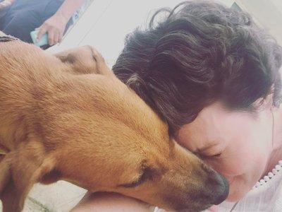 La melena de la esperanza: el pelo de Shannen Doherty vuelve a crecer al librarse del cáncer