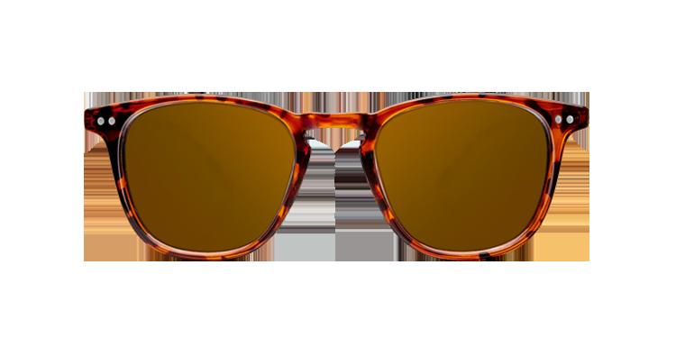 Gafas de sol modelo Wall Tortoise