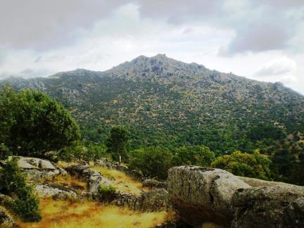 Machota-Baja