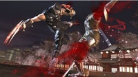 Tomonobu Itagaki: 'Ninja Gaiden II' es el último de la saga