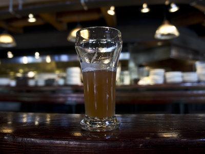 Gracias a la ciencia, ahora podremos elaborar una mejor cerveza