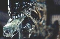 Encuesta de la semana | Extraterrestres en el cine | Resultados