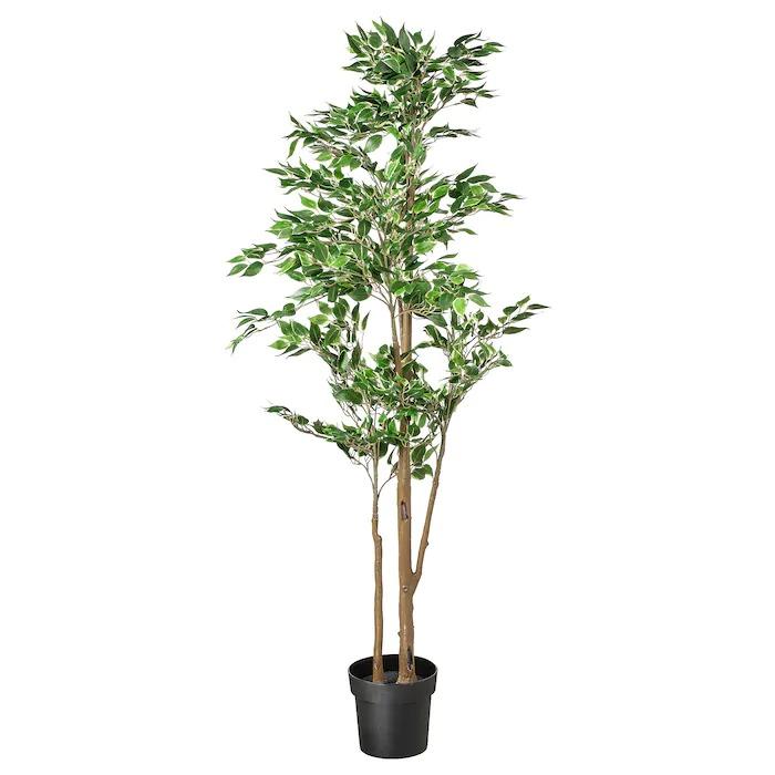 FEJKA Planta artificial, ficus benjamina exótica