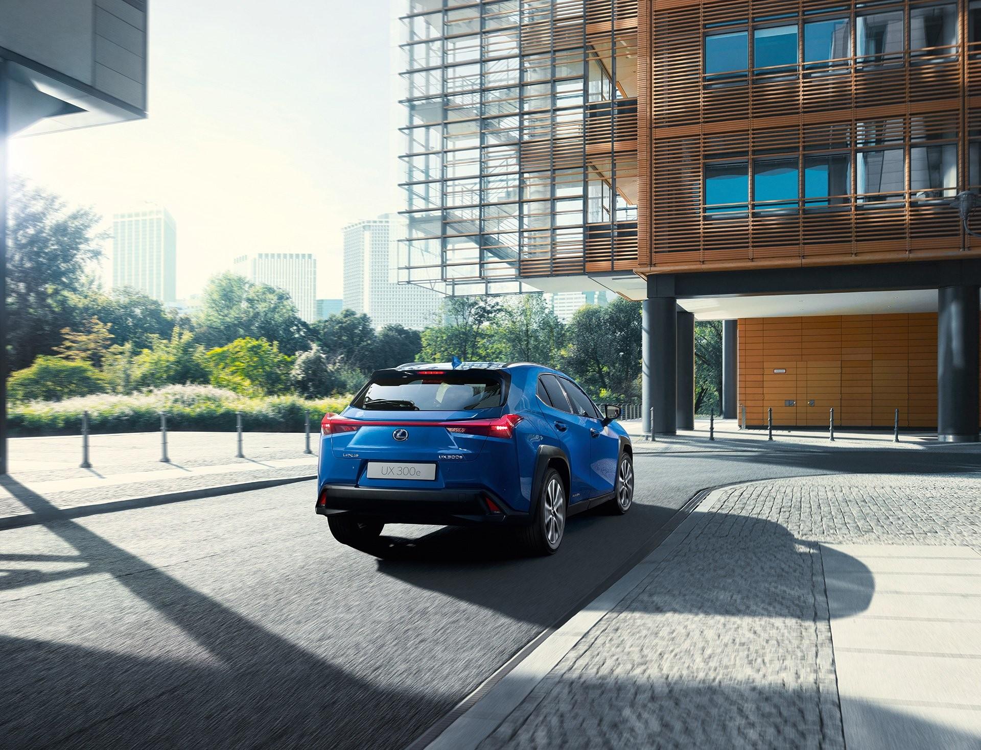 Foto de Lexus UX 300e (12/24)