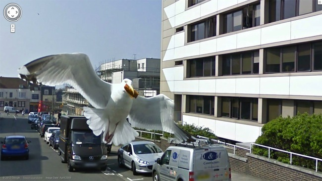 Foto de Google Street View fotos por Jon Rafman (32/32)
