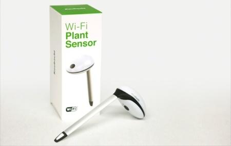 Plant Sensor de Koubachi, monitoriza tus plantas vía wifi
