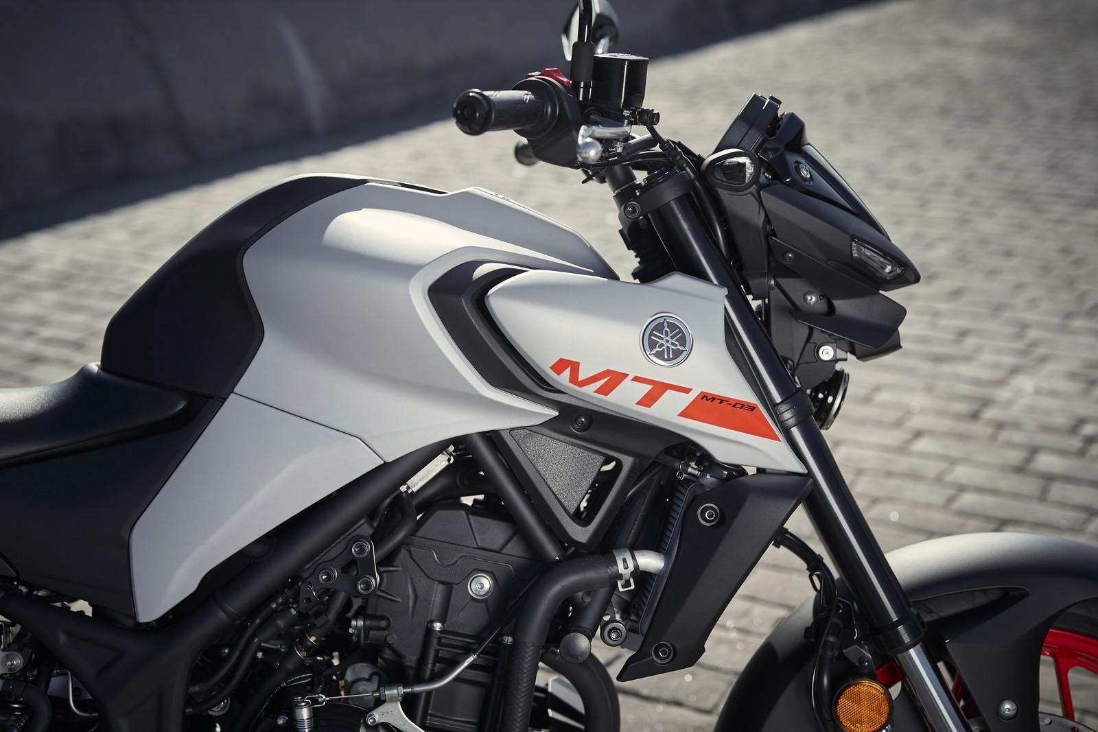 Foto de Yamaha MT-03 2020, prueba (29/33)