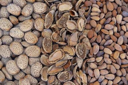 Almonds 2763751 1280