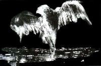 Evgen Bavcar, el mundo surrealista de un fotógrafo ciego